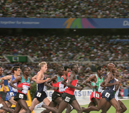 2011년 세계육상선수권대회