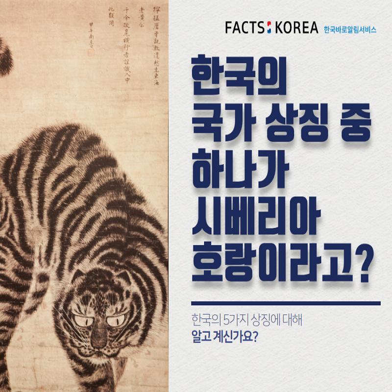 한국의 국가 상징 중 하나가 시베리아 호랑이라고? 한국의 5가지 상징에 대해 알고 계신가요?